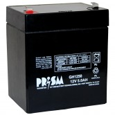 12V 4.6Ah Backup Battery for Emergency/Exit Fixtures (CFM12V4.6)