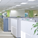 Office Daylight